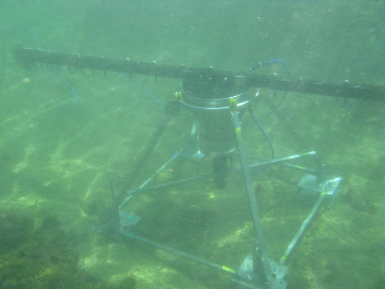 Underwater-SQUID_2-1280×960
